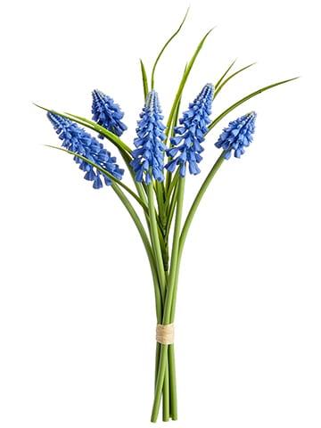 """10"""" Muscari Bundle x5 Blue"""