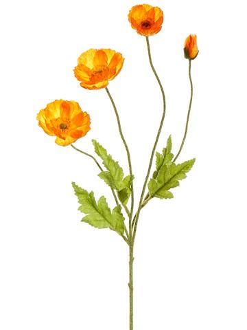 """23.6"""" Poppy Spray Orange"""
