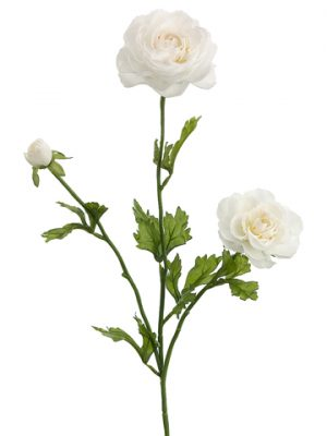 "27"" Ranunculus Spray x3 Cream"