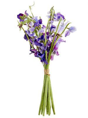 "17"" Sweetpea Bundle Purple Violet"