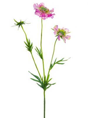 """29"""" Real Touch Scabiosa Spray Amethyst"""