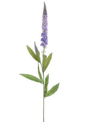 """30"""" Veronica Spray White Lavender"""