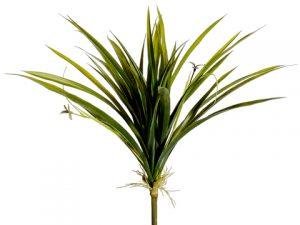 "12"" Plastic Cymbidium OrchidLeaf PlantGreen"