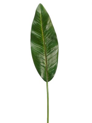 "37"" Bird of Paradise LeafSprayGreen"