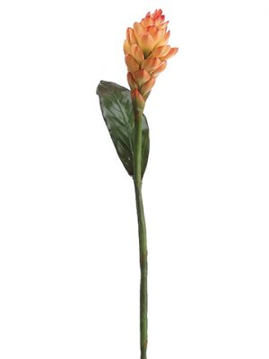 """37"""" Torch Ginger Flower Spray Flame Orange"""