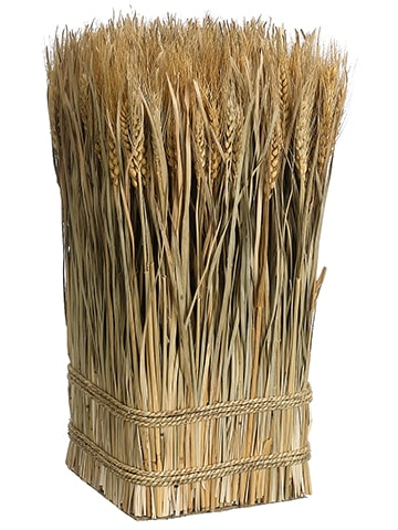 "16.9""H x 10""W x 10""L Preserved Wheat/Grass Standing Twig Nature"