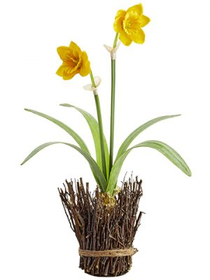 "18"" Daffodil With Bulb in Twig Container Yellow"