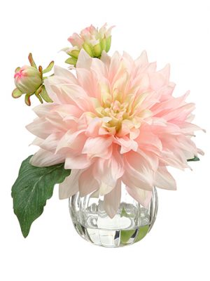 "8"" Dahlia in Glass Vase Pink Cerise"