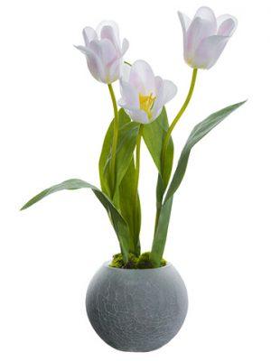 """19"""" Tulip in Glase Vase Blush"""