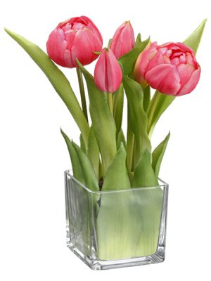 """9"""" Tulip in Glass Vase Teaberry"""