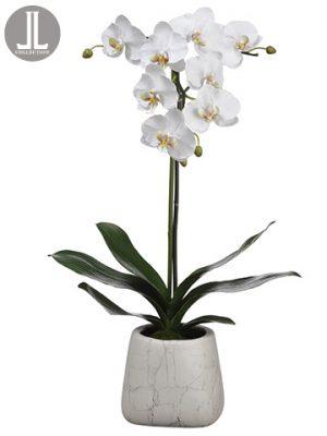 "30"" Phalaenopsis Orchid Plantin Marble Look PotWhite"