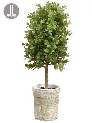 "16"" Boxwood Topiary in ClayPotGreen"