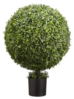 "36""H x 23""D Boxwood Ball Topiary in Nursery Pot Green"