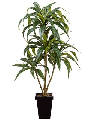 4' Dracena Plant in Metal Pot Green Grey