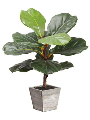 "18.1"" Fiddle Leaf Tree inWood PlanterGreen"