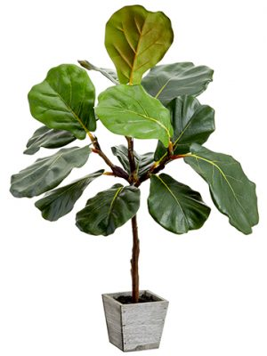 "23"" Fiddle Leaf Tree in Wood Planter Green"