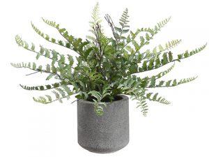 """15"""" Fern in Cement Pot Green"""