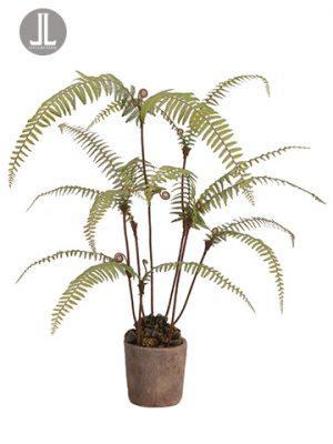 "39"" Dicranopteris Fern Plantin Clay PotGreen"