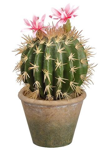 """10.5"""" Flowering Barrel Cactusin Paper Mache PotGreen Pink"""