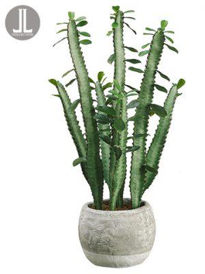 "20"" Cactus in Terra Cotta Pot Green"