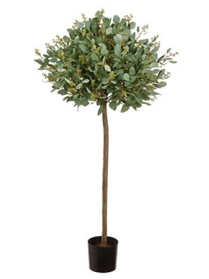 4' Eucalyptus Topiary Tree in Pot Frosted Green
