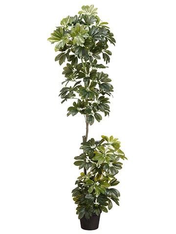 56 Eva Schefflera Wall Plant In Pot Green Silk Flower Depot