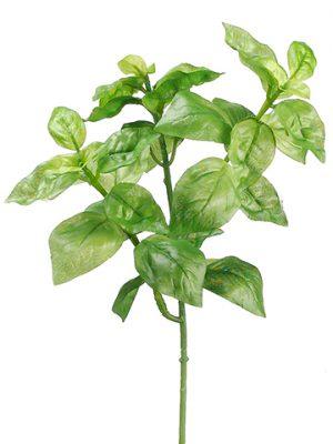 """9"""" Basil Bush Green"""