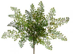 "16"" Lace Fern Bush Green"