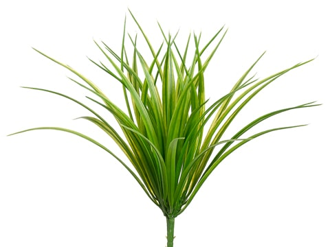 "12"" Vanilla Grass Bush with44 LeavesGreen Light"