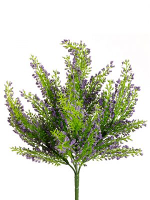 "11"" Mini Heather BusH x 5 Lavender"