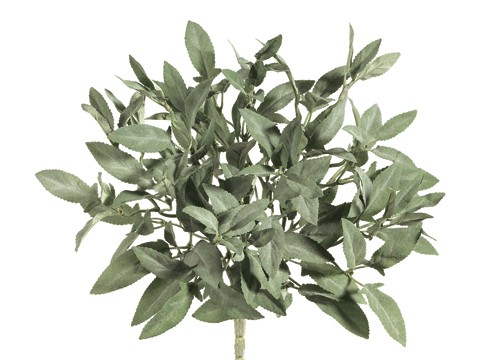 "10"" Sage BusH x 4 Green Gray"