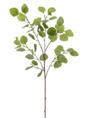 "36"" Eucalyptus Leaf Spray Green"