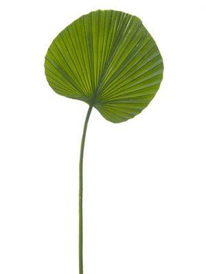 """24.5"""" Fan Palm Leaf Spray Green"""