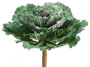 "14""W x 15""L Cabbage Spray Green Purple"