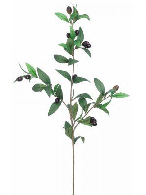 """31.5"""" Olive Branch Green Burgundy"""