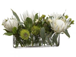 "13""H x 11""W x 23""L Protea/Eucalyptus/Wolly in Vase Cream"