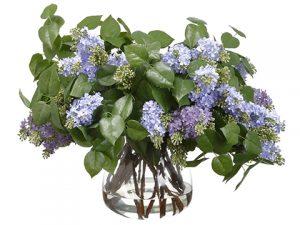 "24""H x 26.5""W x 30""L Lilac inGlass VaseLavender"