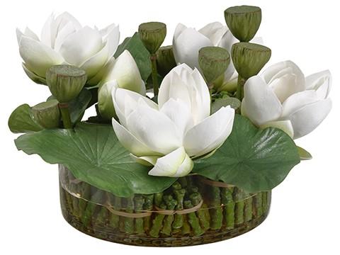 "11""H x 18.5""W x 19""L LotusFlowers in Round Glass VaseGreen"