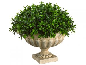 """12""""H x 14""""W x 14""""L Boxwood Domein Resin UrnGreen"""