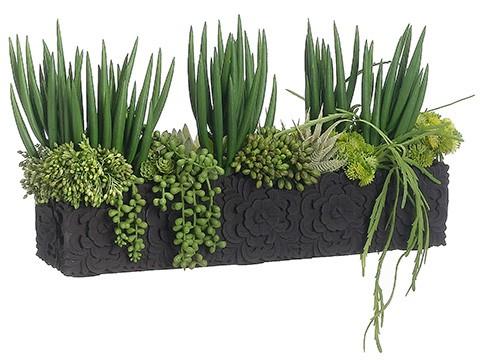 "11""Lx7""W x 19""L Agave/Senecio/Hanging Cactus in Carving PotGreen"