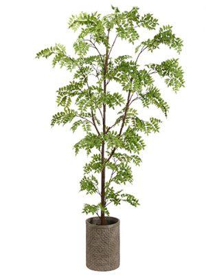 """96"""" Wisteria Tree in FiberCement PlanterGreen"""