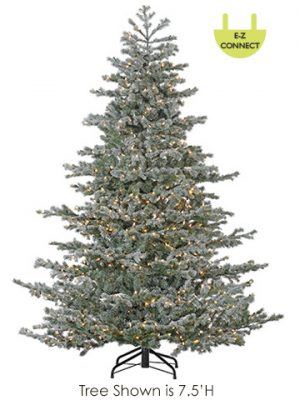 """6'Hx45""""D Mountain Firs Treex709 With 1550 Rice LightsEasy Connect on Metal Stand Gr"""