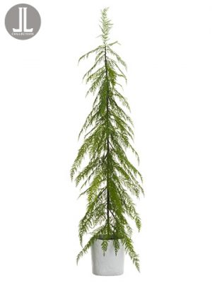 "67"" Cedar Topiary in TerraCotta PotGreen"