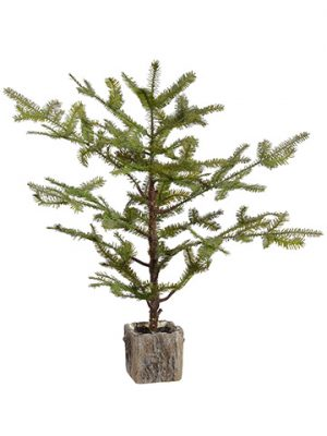 "29"" Spruce Pine Tree Branch in Pot Green"