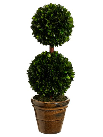 "18.5"" Preserved Boxwood Double Ball Topiary in Ceramic Pot Green"