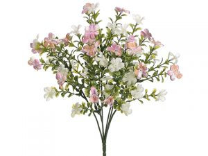 "14"" Mini Forget-Me-Not Bush x7 Pink Cream"