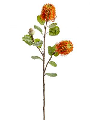 "28"" Banksia Spray Orange"