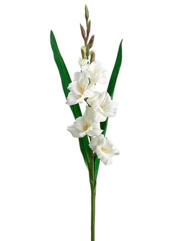 "33"" Gladiolus Spray Cream"