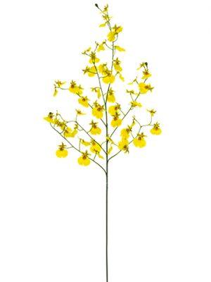 "31.5"" Oncidium Orchid Spray Yellow"