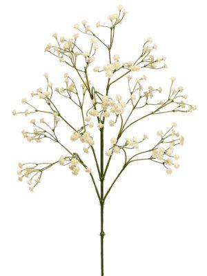 "26"" Gypsophila Spray Cream"